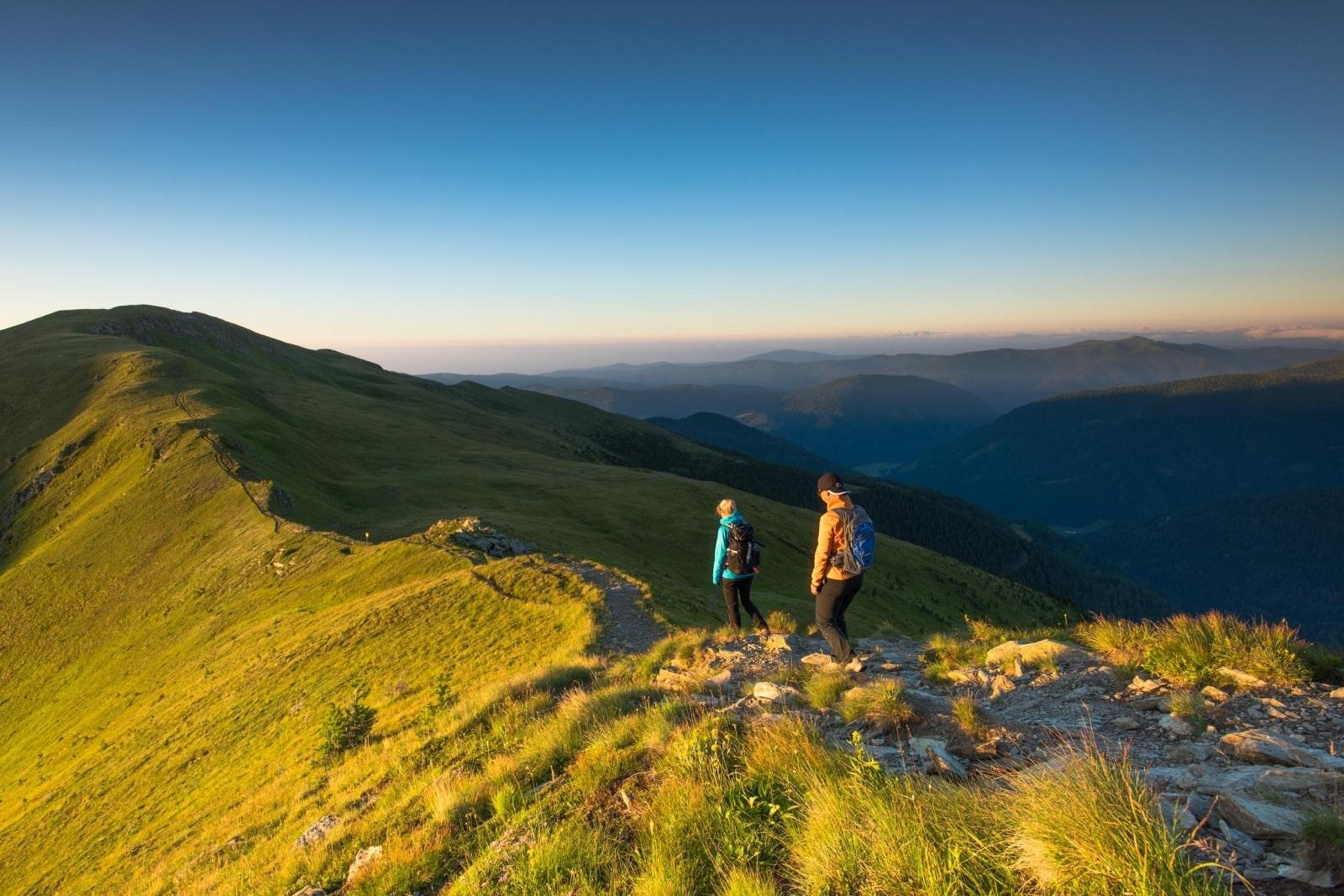 Heidi-Chalet-Falkert-Heidialm-Falkertsee-Blick-Gipfel-Almwiesen