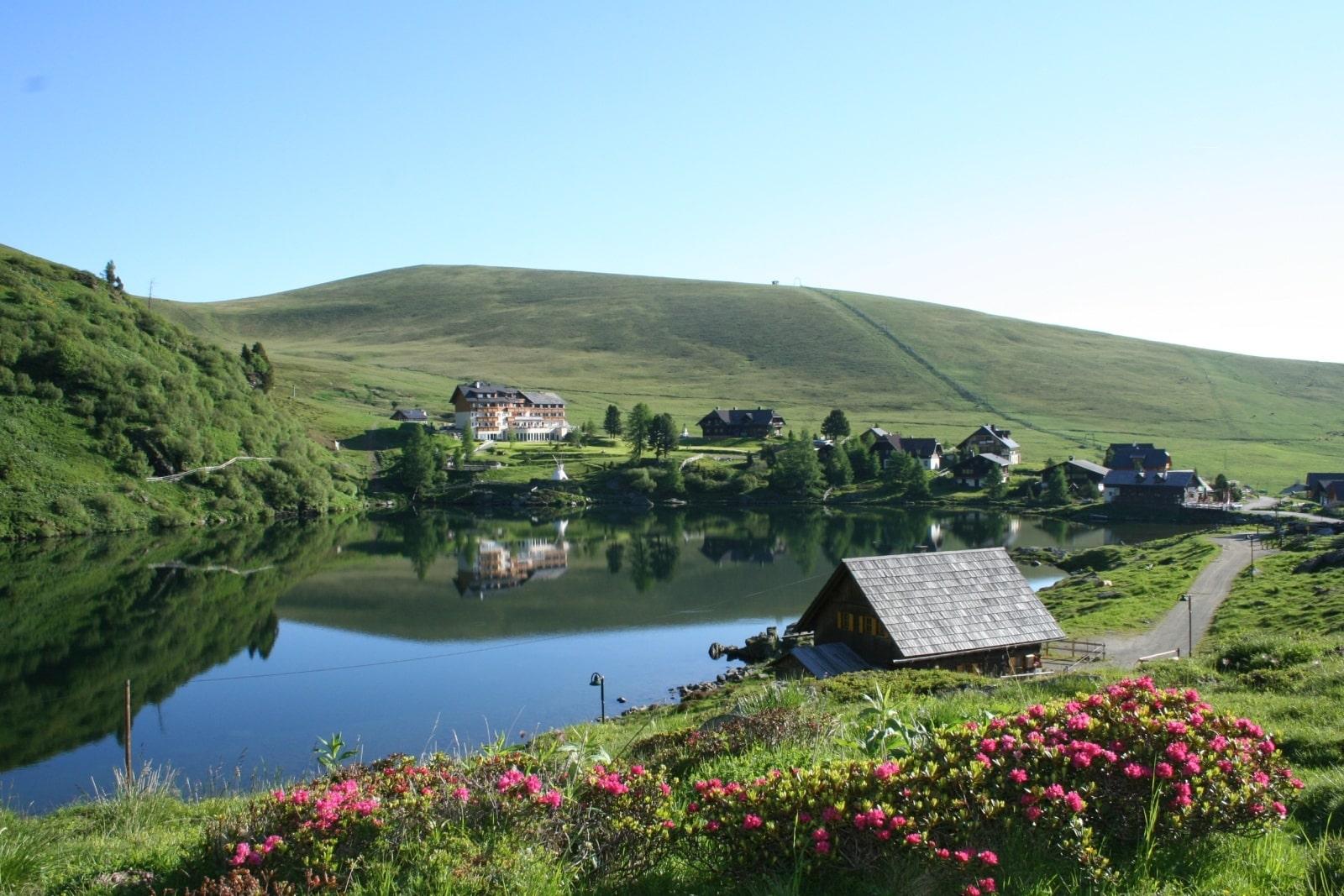 Heidi-Chalet-Falkert-Heidialm-Falkertsee-Natur-Wandern-Almrausch