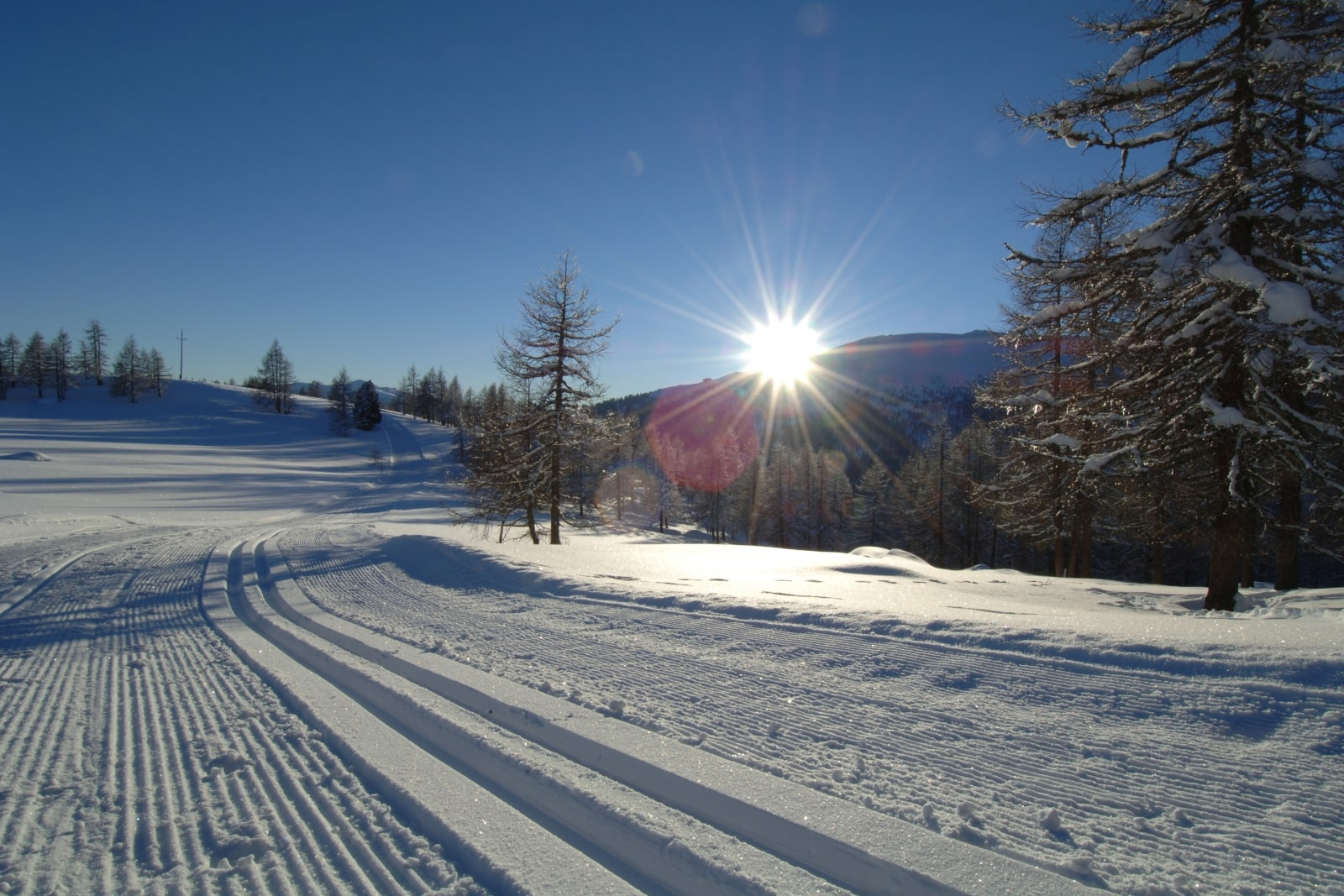 Heidi-Chalet-Falkert-Heidialm-Falkertsee-Ski-Loipe